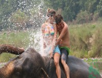 Elephantbathing in Chitwan
